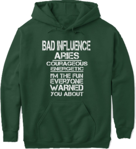 Bad influence aries courageous energetic I'm the fun everyone warned you about funny zodiac hoodie